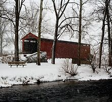 Snowstorm at Poole Forge Covered Bridge by Mark Van Scyoc