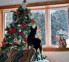 Waiting for Santa! by DeerPhotoArts