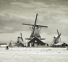 Old Holland by LarsvandeGoor