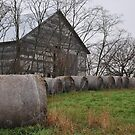 Round bales galore by mltrue