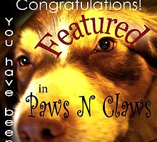 Featured Challenge Paws N Claws by Iva Penner