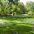 Summer Blanket in St James' Park by Tom Clancy