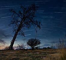 Teebus Startrails by Rob  Southey