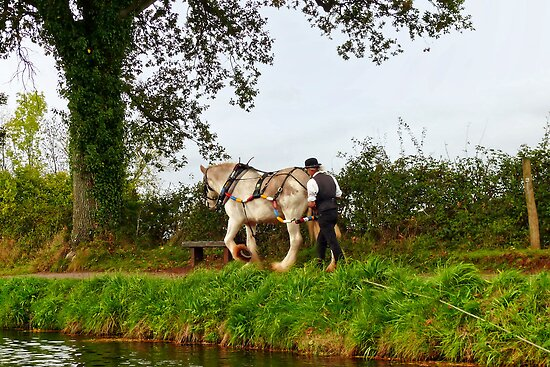 Pulling The Barge ~ Tiverton, Devon by Susie Peek