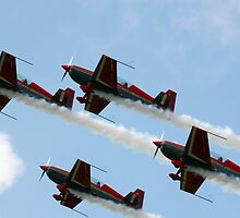 Royal Jordanian Falcons by Bob Martin