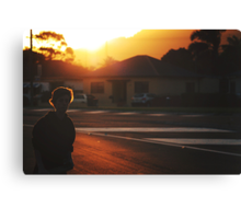 summer in suburbia Canvas Print