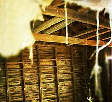 Ghosts In the Attic by Tia Allor
