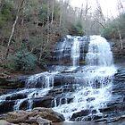 Pearson's Falls, South Carolina by CG1977