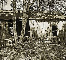 mid 1800s slave house (side view) by wendyL