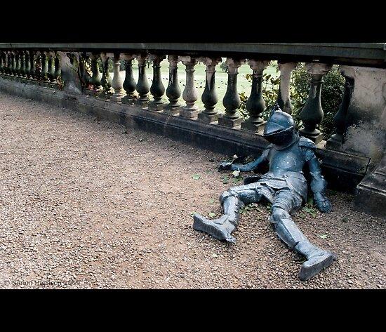 A Rough Knight, Sir? by Simon Harrison