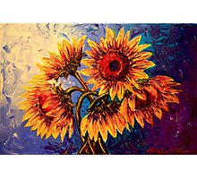 The Five Sunflowers Photographic Print