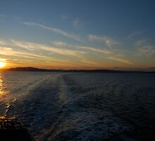 Ferry Wake, Puget Sound by Octoman