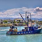 Anaura Bay, Napier by Tony Burton