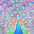 ~*~Peacock~*~ Dreaming Spirit by midnightdreamer