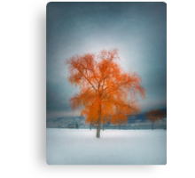 The Dreams of Winter Canvas Print