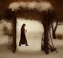 If on a winter's night by Mary Ann Reilly