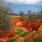 Natures Colours,Outback N.S.W. by Joe Mortelliti