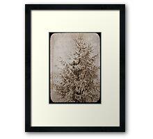Old Xmas Tree Framed Print