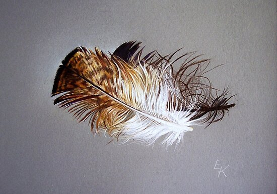 Feather & shadow #2 by Elena Kolotusha