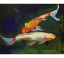 Feng Shui Koi Fish Photographic Print