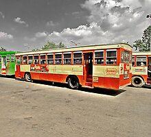 The Bus by Prasad