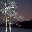 Winter Sky by HELUA