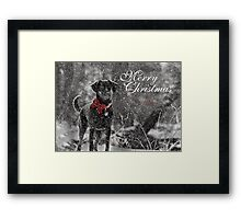 Merry Christmas ~ Sienna Framed Print