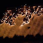 Christmas lights by Bluesrose