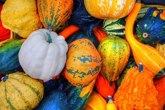 Calabazas decorativas by josemazcona