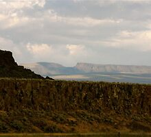 the Steens approach by willum