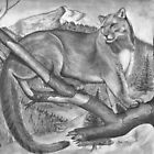 Mountain Lion Wonder by Russ Smith