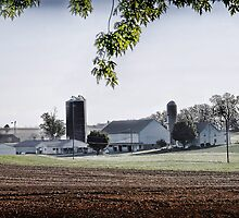 Amish Farmland - Lancaster County by Dyle Warren