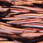 Market Series - fish anyone? by Christine Oakley