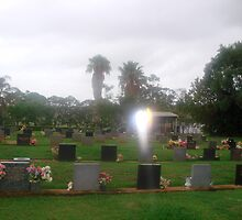 Wings of angel....Childers Lawn Cemetery...Queensland. by marieangel