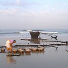 Morning catch, Colva, Goa by photoartindia