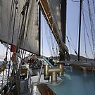 "Sailing: Schoner ""Sir Robert"" XI - www.sir-robert.com by Frank Schneider"