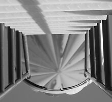 rotini slide staircase-b&w by nicolle walker