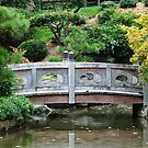 Bridge in New York botanical park by loiteke