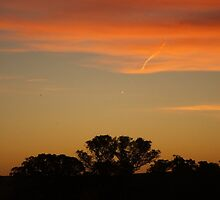 Australian Sunset.10 by shaldema1
