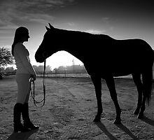 Horse and Woman by psnoonan