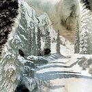 The Wilderness Spirit by Madeline M  Allen