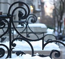 Snowbound Scrolls by ElyseFradkin