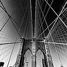 Brooklyn Bridge by Daniel  Rarela