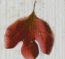 Vintage Leaf by Linda Sannuti