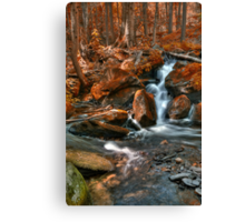 Indian Summer Canvas Print