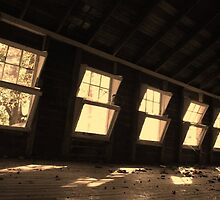 Windows to the Past by Colleen Friedman