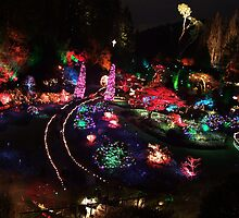 Night in the Sunken Garden(2) by George Cousins
