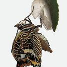 Charaxes by jimmy hoffman