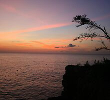 Negril Sunset by Laurel Talabere