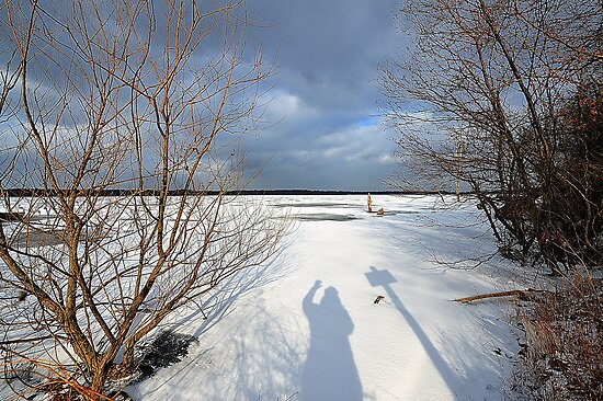 Shadow in the Snow by angelcher